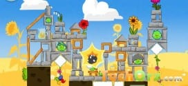 angry-birds-seasons-summer-pignic